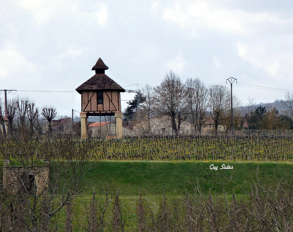 pigeonnier du quercy caillac-20130329
