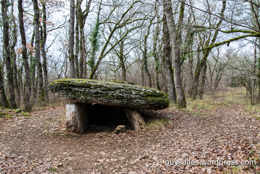 dolmenboisdelrey-5908