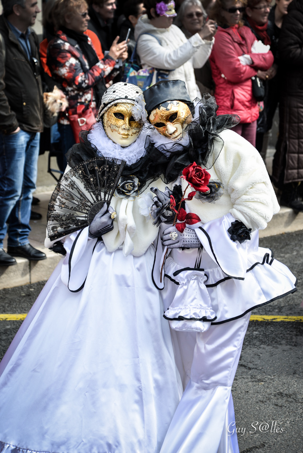 carnaval-vénitien-castres-7003