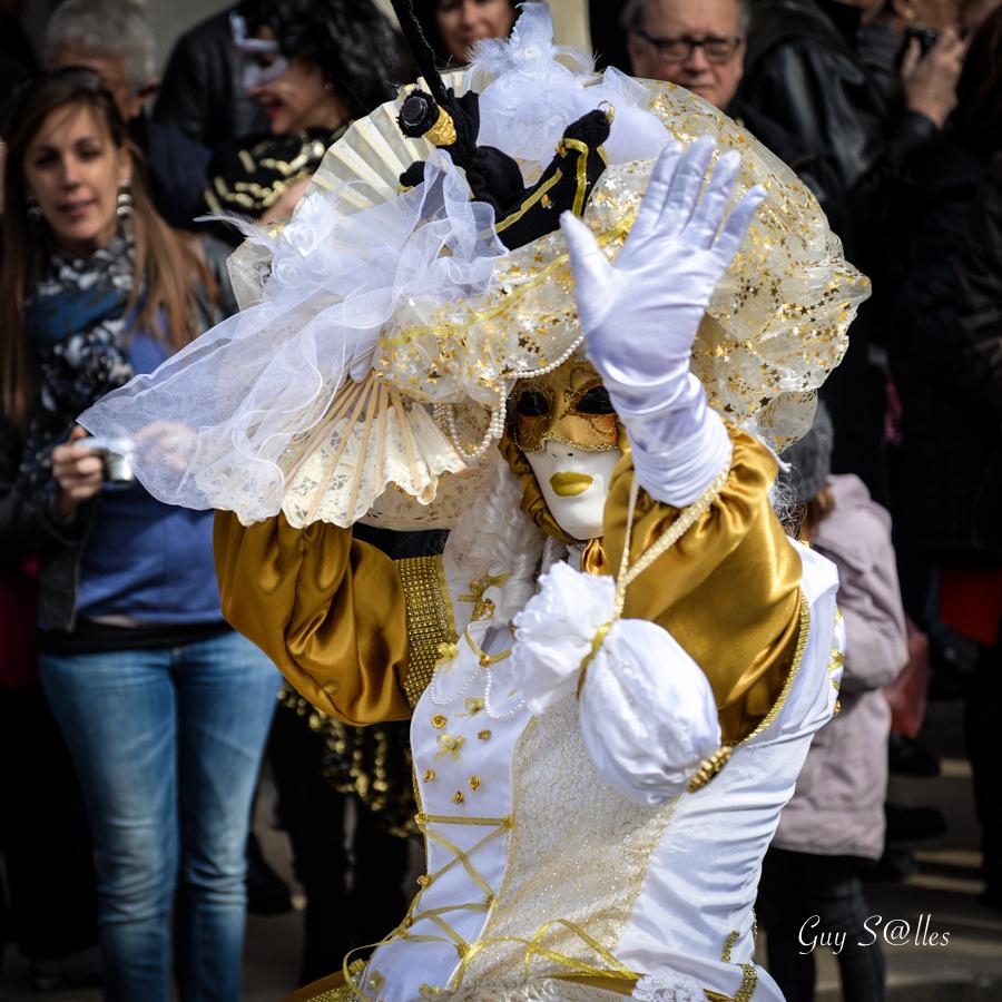 carnaval-vénitien-castres-7089