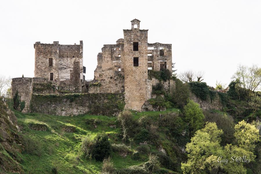 chateau-St-martin-laguepie-7738