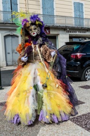 carnaval_venitien_castres-3252