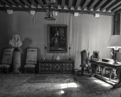 chateauvillesavin-